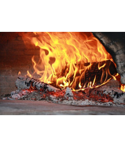 Ecological fire starter