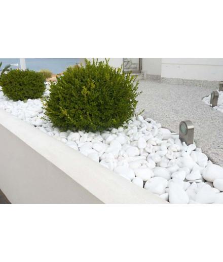 EXTRA WHITE pebbles 40-80mm