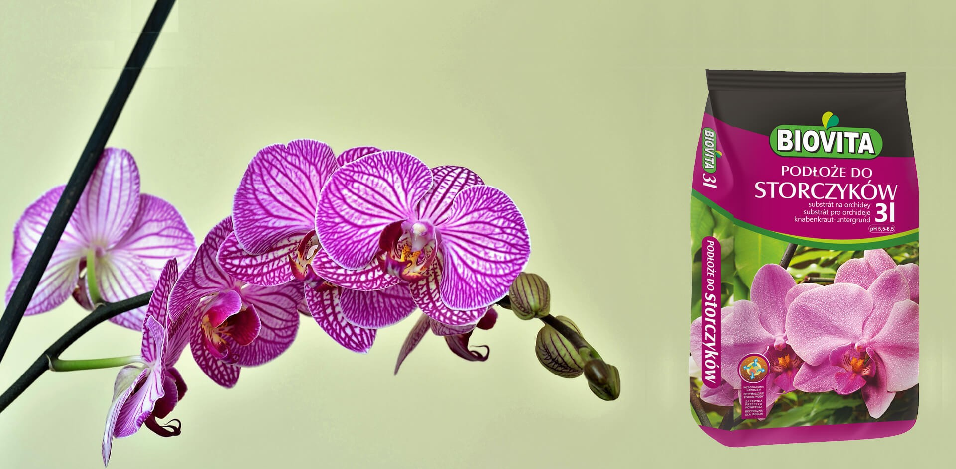 best substrate for orchids