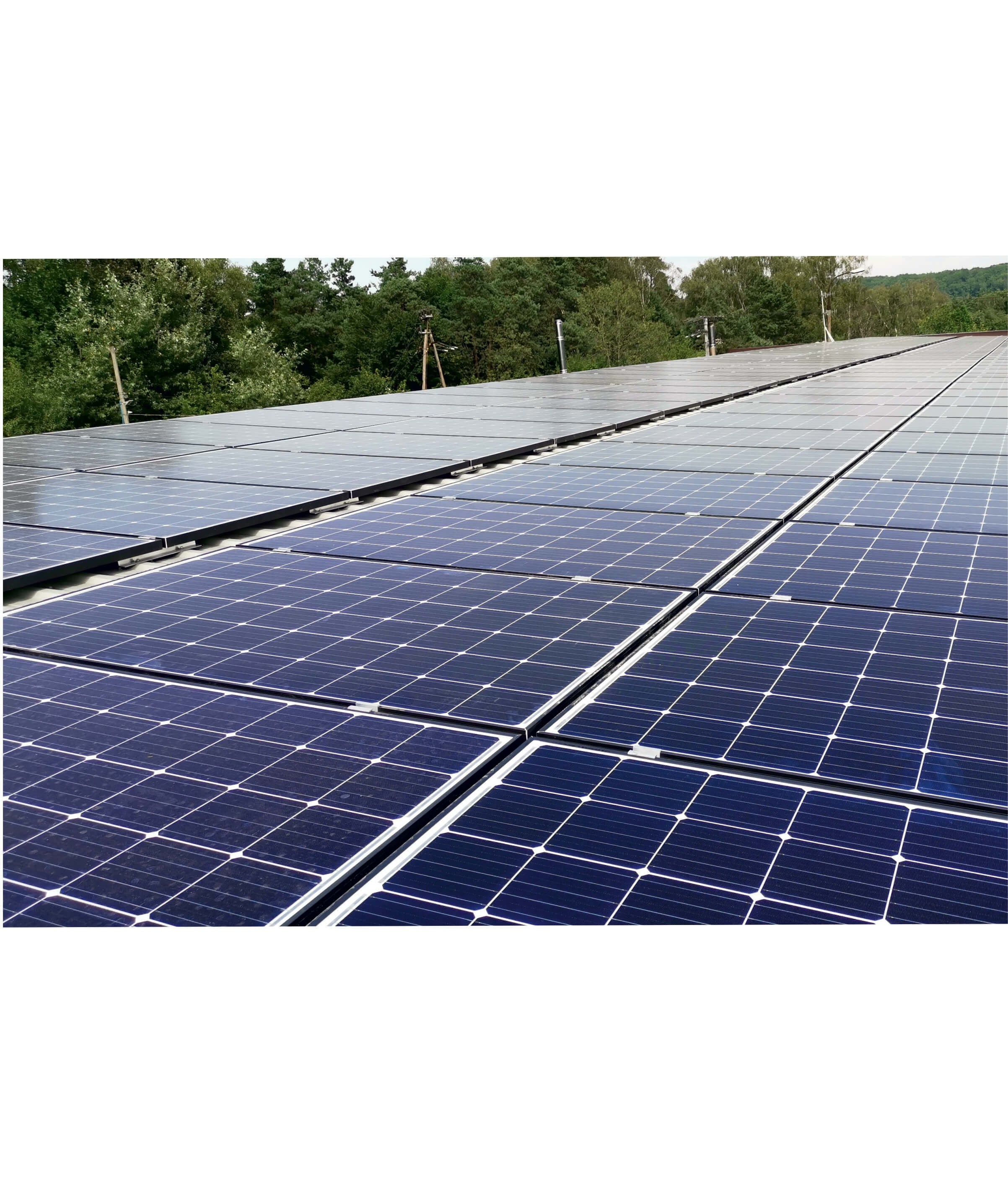 We focus on ecology! New investment in solar panels